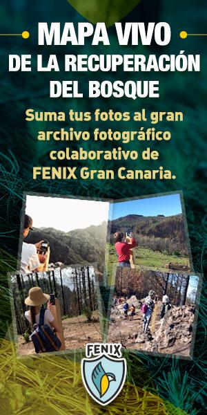 iniciativa medioambiental FENIX GRAN CANARIA